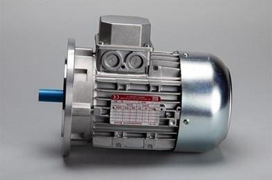 3 Phase Flanged Motor - 0.75kw